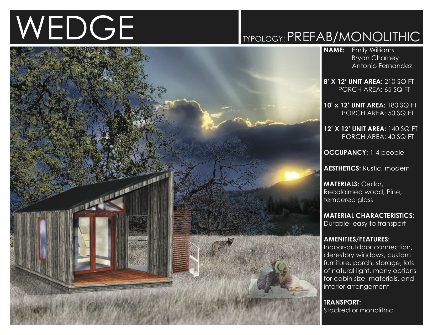 WEDGE_Brochure1